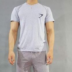 Áo thun cotton chuyên gym cho nam AG05E
