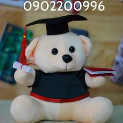 Gấu tốt nghiệp 20cm