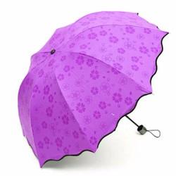 ô dù ma thuật gặp nước nở hoa chống tia UV