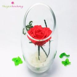 Bình hoa hồng bất tử trao gửi yêu thương