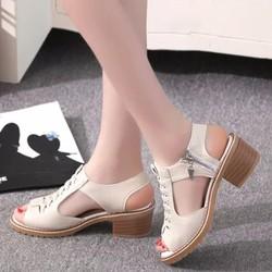 SD02K - Giày cao gót nữ Phong Cách Hàn Quốc
