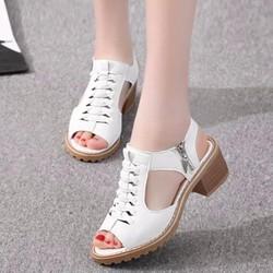 SD02T - Giày cao gót nữ Phong Cách Hàn Quốc