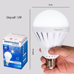 Bóng đèn LED tích điện 12W
