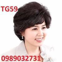 Tóc giả trung niên tặng kèm lưới - TG59