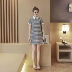 Đầm suông nữ chất liệu thun cao cấp