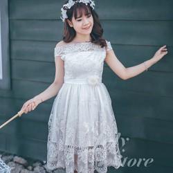Đầm thiết kế cao cấp - Đầm xòe công chúa