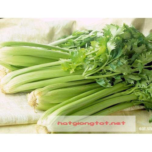 Hạt giống rau cần tây - 3962757 , 3409989 , 15_3409989 , 25000 , Hat-giong-rau-can-tay-15_3409989 , sendo.vn , Hạt giống rau cần tây