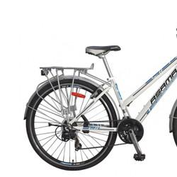 Xe đạp thể thao Asama AMT 48 F