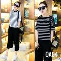 Bộ Áo T-shirt nữ, phong cách Hàn Quốc, hot nhất hè 2016