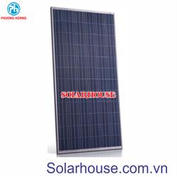 Pin năng lượng mặt trời Solarhouse Poly 250w