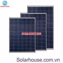 Pin năng lượng mặt trời 110w Poly Solarhouse