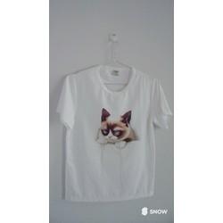 Áo thun hình mèo