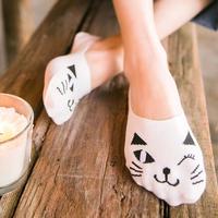 combo3 đôi vớ mèo
