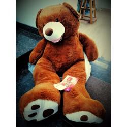 Gấu bông costco , teddy , Sleepy...