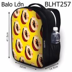 Balo Teen - Học sinh - Laptop trái đu đủ - VBLHT257