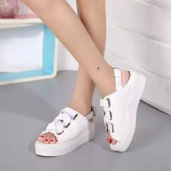 Giày sneaker nữ mới đang được ưa chuộng nhất hiện nay
