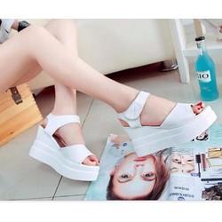 Giày sandal xuồng quai ngang dán V1