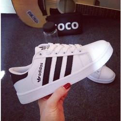 [Greenlife Shop] Giày thể thao thời trang
