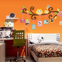 Decal Trang Trí Tường Hình Cú Mèo Và Khung Ảnh