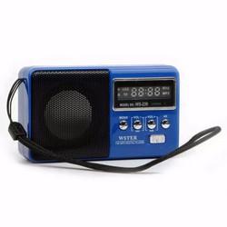 Máy nghe nhạc MP3 nhỏ gọn USB, thẻ nhớ, đài FM WS239 Loại 1 V3