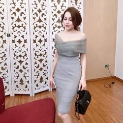 Hàng Quảng Châu - Đầm Body Phối Voan Nhũ