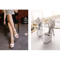 C313T - Giày Cao Gót Nữ Sang Trọng