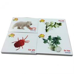 Bộ 416 thẻ học song ngữ Anh  Việt cho bé