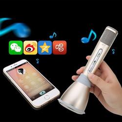 Micro kiêm loa Bluetooth