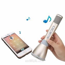 Micro Karaoke Kiêm Loa Bluetooth
