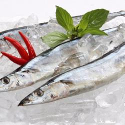 Cá thu đao đông lạnh 1kg 7-10 con khay 500g