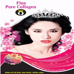 Fine Pure Collagen-Q