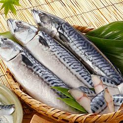 Cá Sapa Nhật 300-500gr - đông lạnh