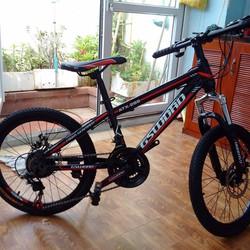 Xe đạp trẻ em 20