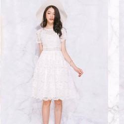 đầm ren form xèo cực sang cực đẹp Alumi Dress