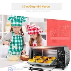 Lò nướng điện Kesun