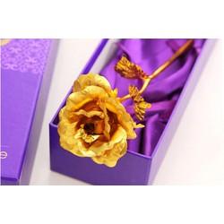Hoa hồng mạ vàng 24k quà tặng 20 tháng 10