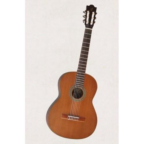 Classic guitar Việt Nam DC250 màu nâu