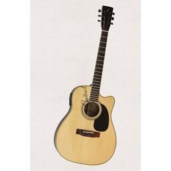 Acoustic guitar Việt Nam DJ260 có EQ