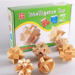 Đồ chơi trí tuệ- lắp ráp, xếp hình gỗ