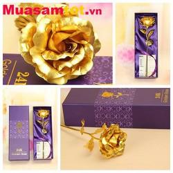Hoa Hồng mạ vàng 24k  quà tặng ý nghĩa nhân ngày Phụ Nữ Việt Nam