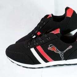 Giày thể thao nam Puma - Các loại giày thể thao nam puma -sport -nike