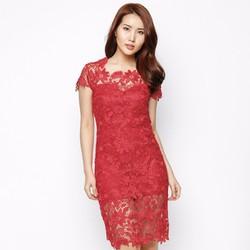 Đầm Ren Thêu Hàn Quốc Cao Cấp
