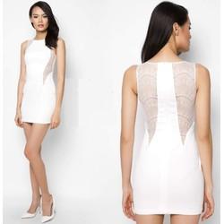 Đầm ôm thiết kế phối ren độc đáo