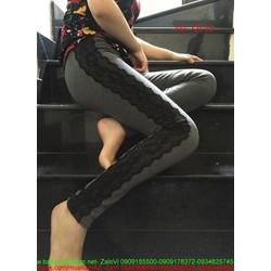 Quần legging thể thao nữ phối viền ren hoa nổi sành điệu QL23