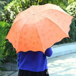 Dù đi mưa gặp nước nở hoa