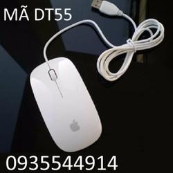 Chuột máy tính Apple DT55
