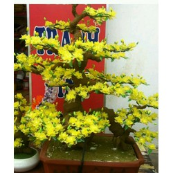 hoa mai pha lê handmade