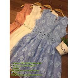 Đầm ren xinh yêu