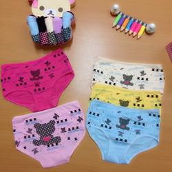 C021 - Combo 5 quần lót nữ họa tiết gấu teddy cực dễ thương