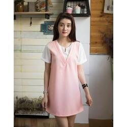 Đầm Suông Phối Màu Trẻ Trung